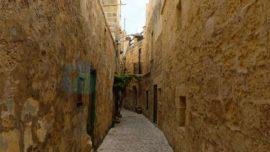 Malta Tarihi
