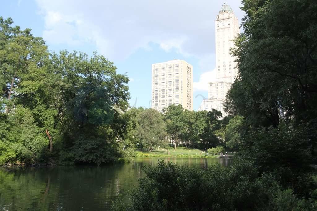 Central Park New York un hava aldığı yer