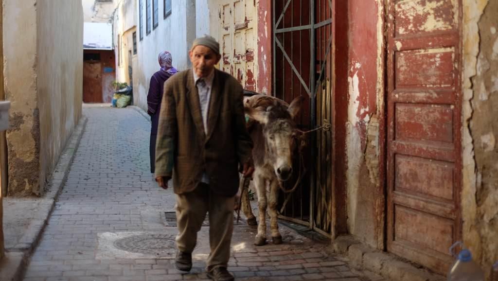 Fes Sokakları