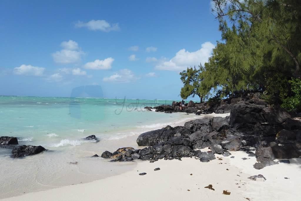 Ile Aux Cerfs adası katamaran turu Mauritius için önemli bir aktivite