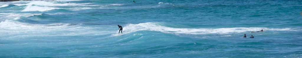 sydney de surf çok popüler